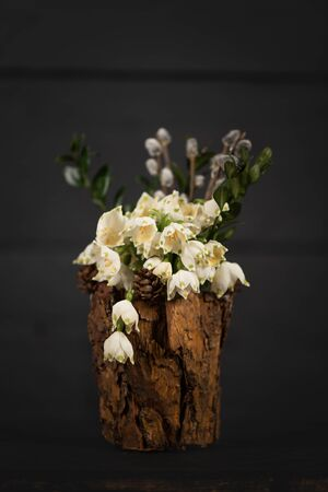 Leucojum vernum in a decorative vase. Is the first spring snowflake. Theme of International Womens Day.