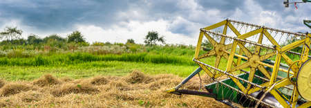 Combine harvester reel. Combine getters grain crop on the agricultural field. Weather with gloomy sky threatens the harvesting. Harvest season. Wide panoramic background of the agricultural theme 版權商用圖片