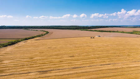 Aerial drone view of beautiful summer countryside landscape. Agricultural machinery in the field. Combine harvester gathers grain on a wheat field. Harvesting time 版權商用圖片