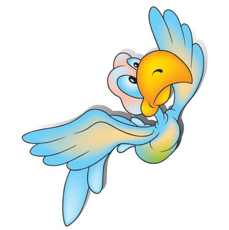 Parrot 05