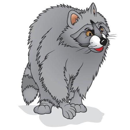 racoon: Racoon 02