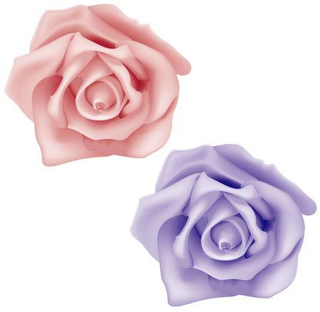 flowered: Roses vol.1