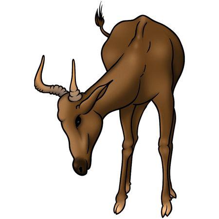 ruminant: Antelope 01