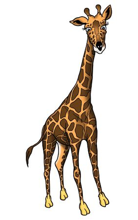 reticulose: Giraffe