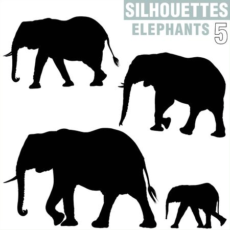 pachyderm: Elephants Silhouettes 5