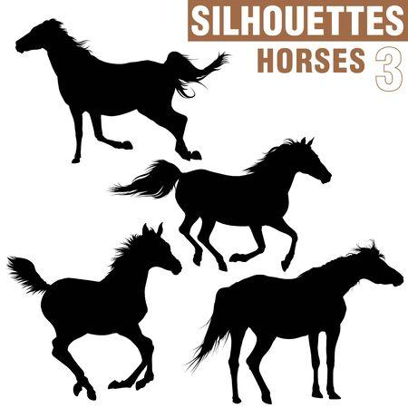 hoofed mammal: Horses Silhouettes 3 Stock Photo