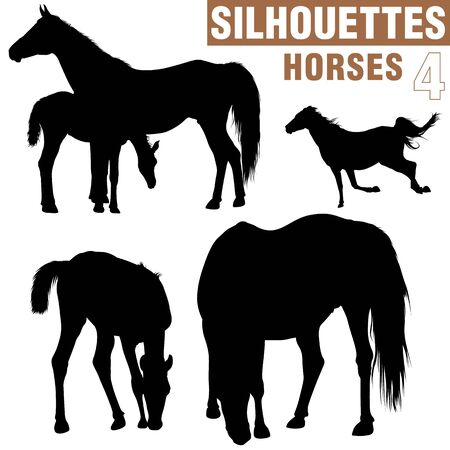 colt: Horses Silhouettes 4
