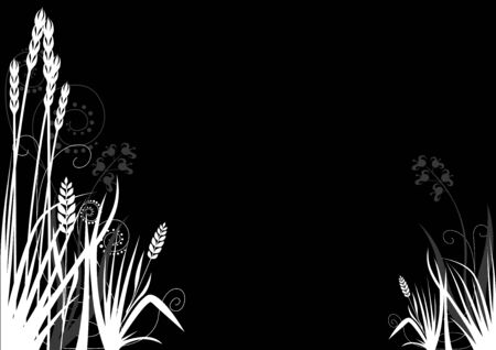 herbage: Floral decoration 08 - black and white decoration
