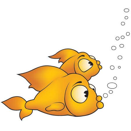 vector fish: Fish 09 Two golden fish - cartoon illustration Illustration