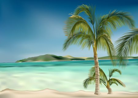 the romanticism: Palms beach - Highly detailed illustration