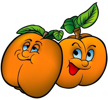 Apricots - coloured cartoon vector illustration Illustration