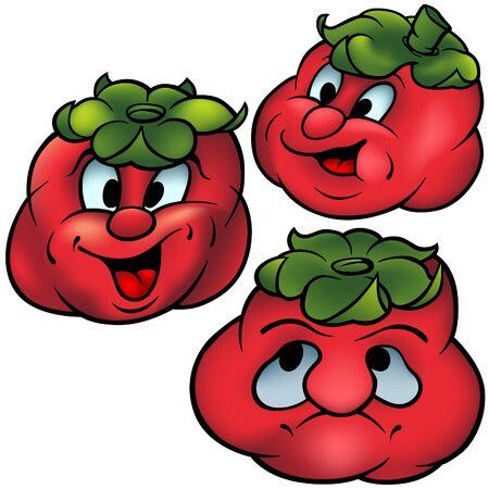 salat: Three Tomatoes - High detailed and coloured cartoon vector illustration Illustration