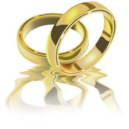 Dos anillos de boda - detallado vector imagen  Foto de archivo - 2550710