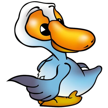 palmiped: Duck - colored illustration as vector