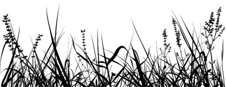 02: Grass Silhouette 02 - detailed illustration as vector Illustration
