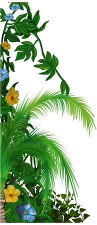 Jungle vegetation 1 - tropical plants as hand drawn background Stock Photo