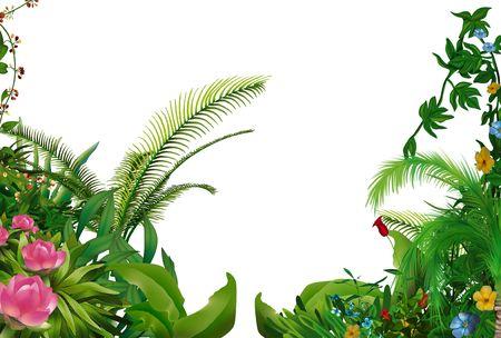 vegetation: Tropical Plants 1 - hand drawn background illustration