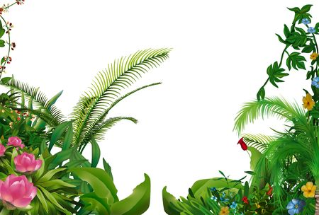 Tropical Plants 1 - hand drawn background illustration