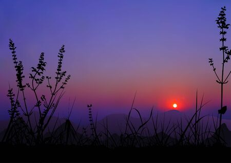 ambience: Sunrise Scene 01 - realistic natural background as vector