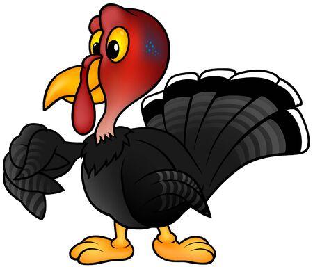 Black Turkey - colored cartoon illustration as vector