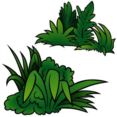 Grass Set C - colored cartoon illustration as vector