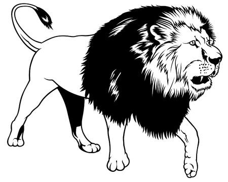 africa outline: Lion - black outline illustration as vector