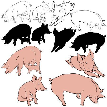 豚セット 03 - ベクトルとして色の手描きイラスト
