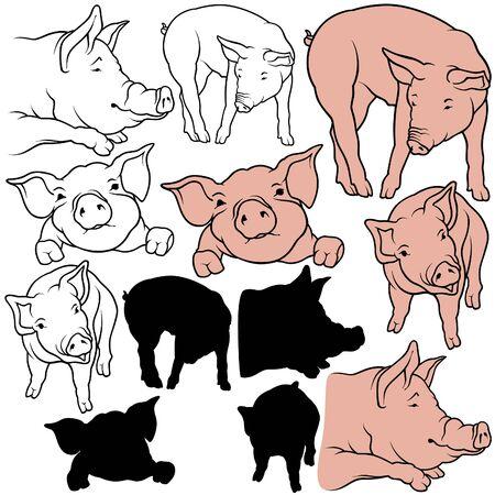 豚セット 07 - 色の手描きイラスト ベクトルとして