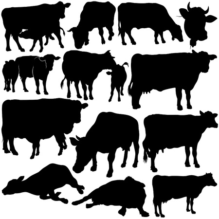Cow Set Silhouettes 1 - black hand drawn illustration as vector Stock Vector - 5263933