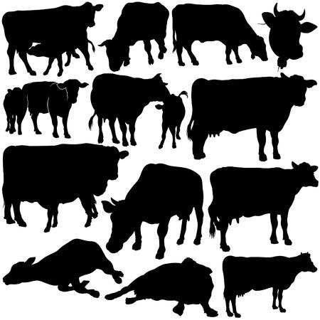 milk cow: Siluetas de vaca Set 1 - negro elaborado a mano ilustraci�n como vector de Vectores