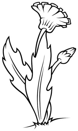 Dandelion - Black and White Cartoon illustration, Vector Vector