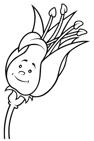 white lilly: Lilly Flower - Black and White Cartoon illustration, Vector