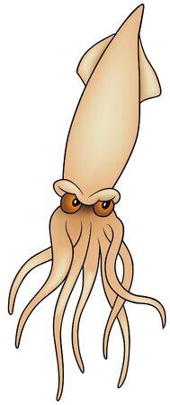 cuttlefish: Cuttlefish - colored cartoon illustration, vector