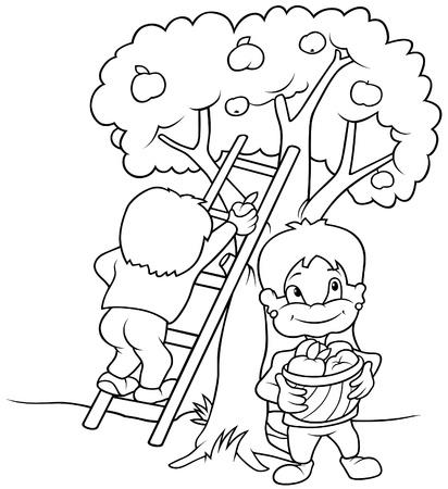 Childrens Harvesting Fruits - Black and White Cartoon illustration, Vector
