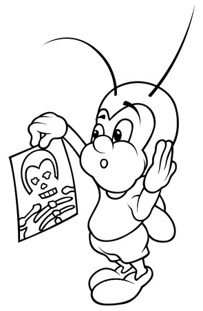 Bug And X Ray Picture