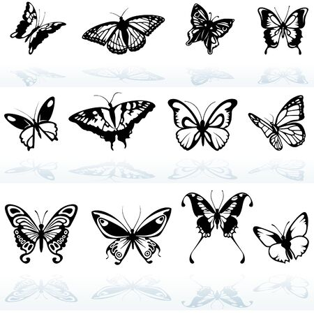 butterfly silhouette: Butterfly Silhouettes - colored illustration