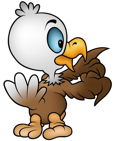 Little Bald Eagle - Cartoon Illustration,  Vector