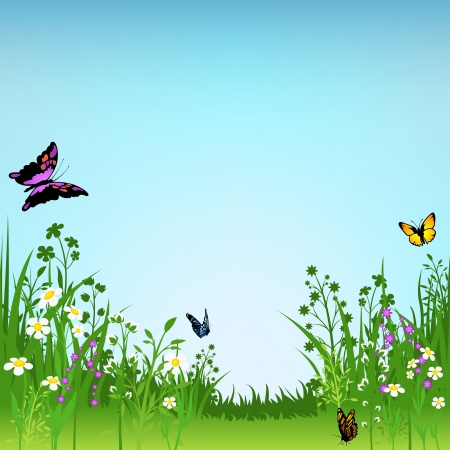 Flowering Meadow and Butterflies - Background Illustration Vector