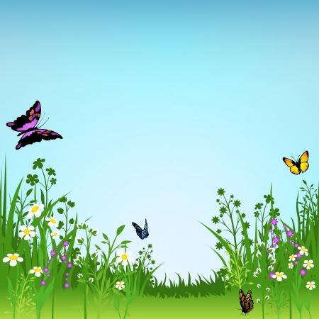 virágzó: Virágzó Meadow és pillangók - háttér illusztráció