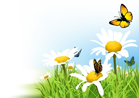Butterflies and Daisy Stock Vector - 15230868