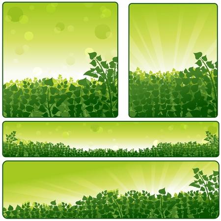 Nature Banner Set - Backgrounds Illustration Stock Vector - 15325252
