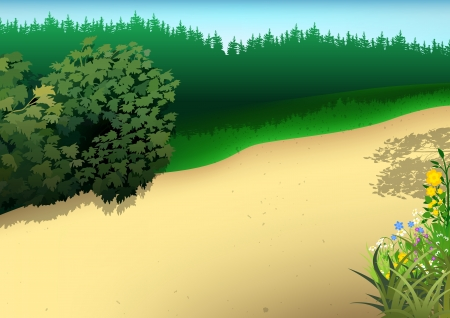 Summer Landscape with Footpath - Cartoon Background Vector