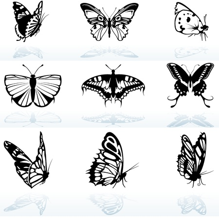 Butterfly Silhouettes - Black And White Illustration, Vector Vector