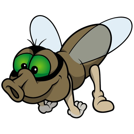 Flying Fly - Colored Cartoon Illustration, Vector Ilustração