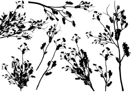 shrub: Set of Shrub Branch Silhouettes