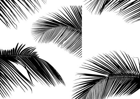 Palm Leaf Silhouettes - Black Illustration, Vector Illustration