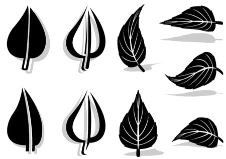 veining: Leaf Symbol Set - Black and White Illustrations, Vector