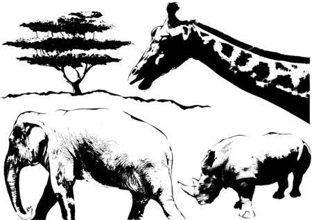 pachyderm: African Animals Sketch - Black and White Illustration, Vector Illustration