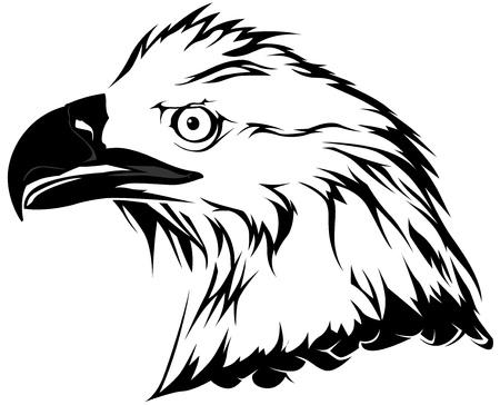 bald eagle: Bald Eagle Head - Black Illustration