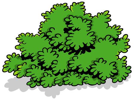 shrub: Green Cartoon Shrub - Design Element Illustration, Vector